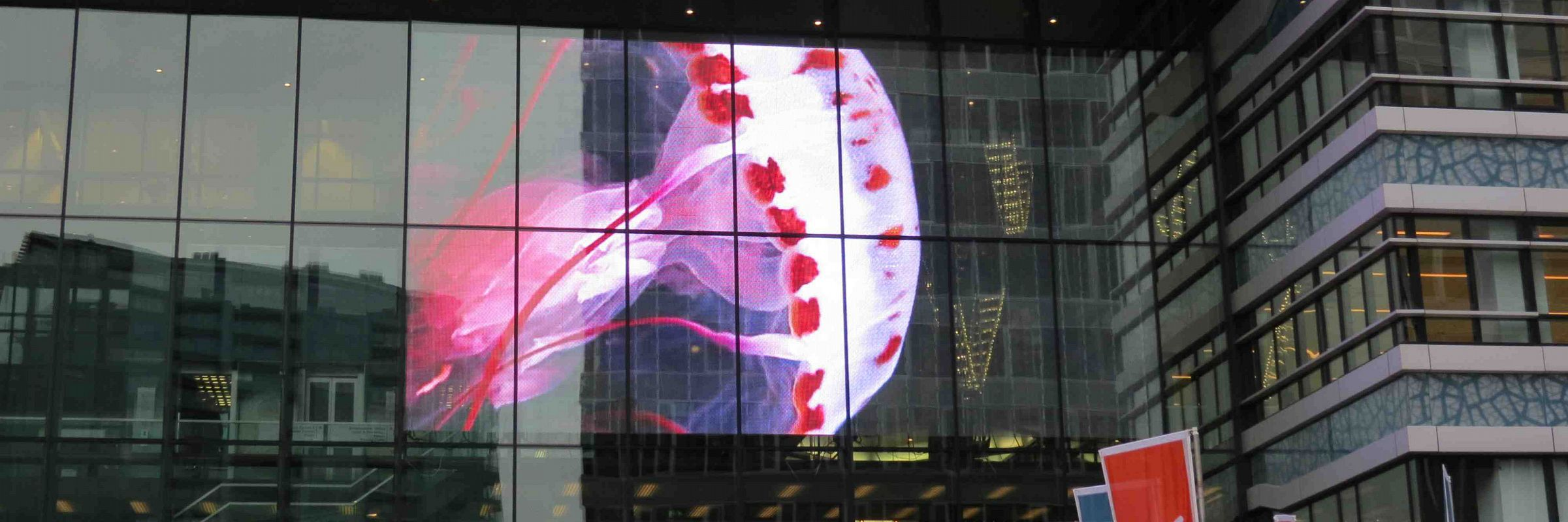 transparent led screens clearled